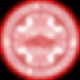 Gerri Berger, Genetic Genealogist, DNA Adoption Search Expert, Genetics, Genetic Genealogy, genetic genealogy coach, adoption, locating biological parents, discovering your biological parents, biolgial parents, family origin, finding family origin, DNA,