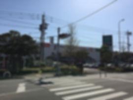 IMG_2994.jpg
