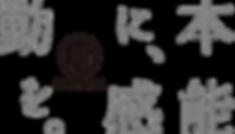 2567217_66f5f43b84_ml.png