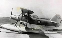 aviationfaireyseafox