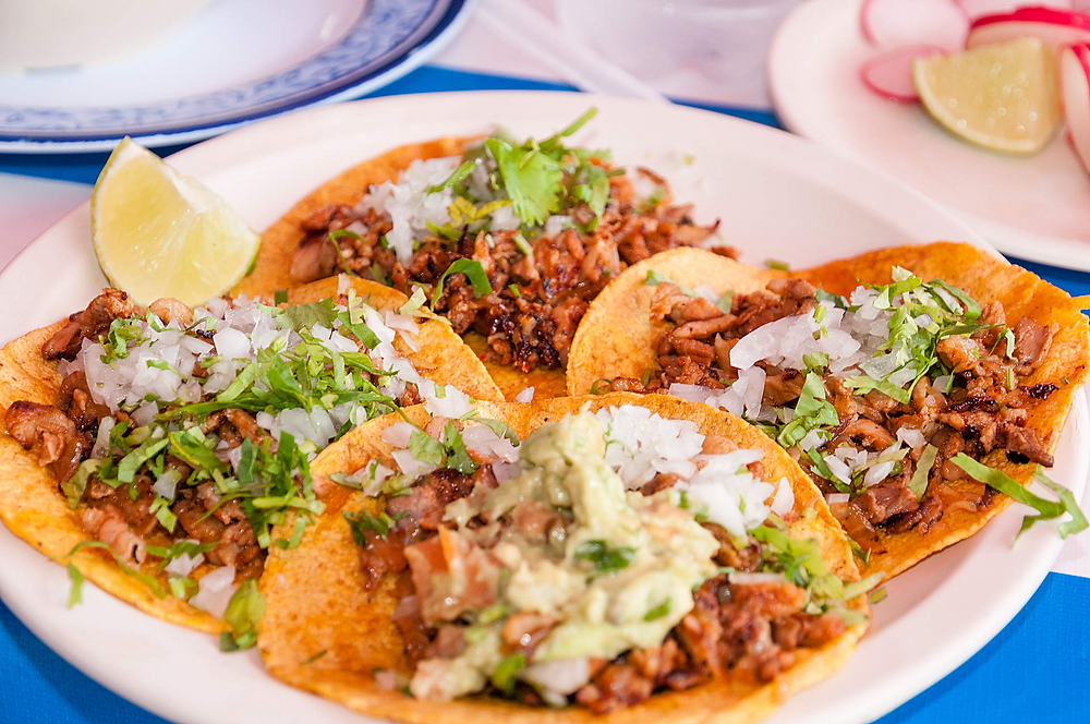 Flour tortilla for mexican tacos in New Zealand