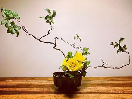Ikebana --- Sunday Ritual