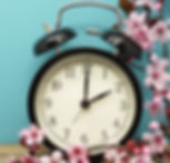 Pink Blossoms and an Alarm Clock on an