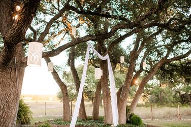 Rising Oaks Images