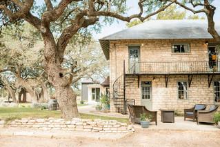 Rising Oak Images