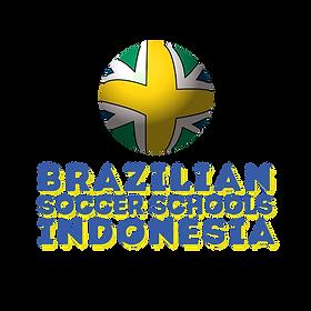 Logo BSS 2.0.png