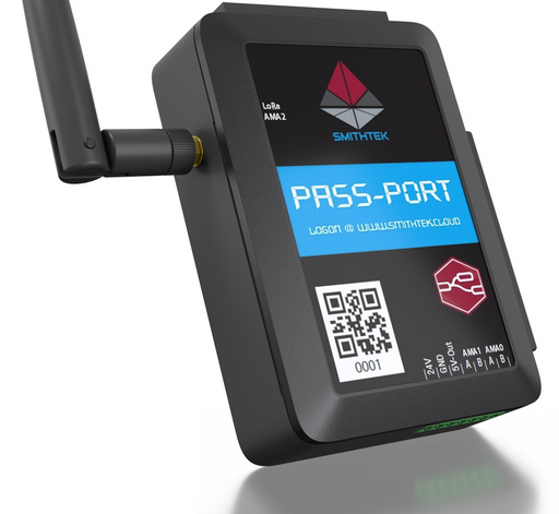 Passport_pers_pdd (1).png