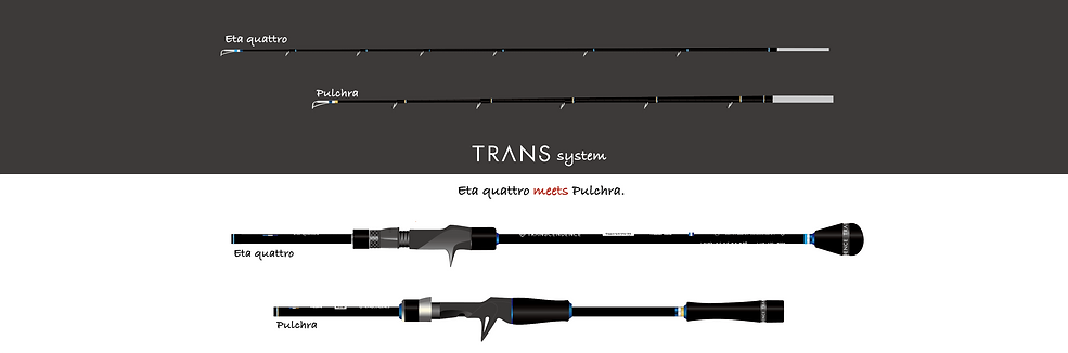 Transsystem.png