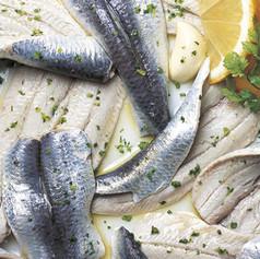 Filetti di sardine marinati