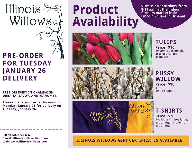 Illinois Willows January 26 2021 deliver