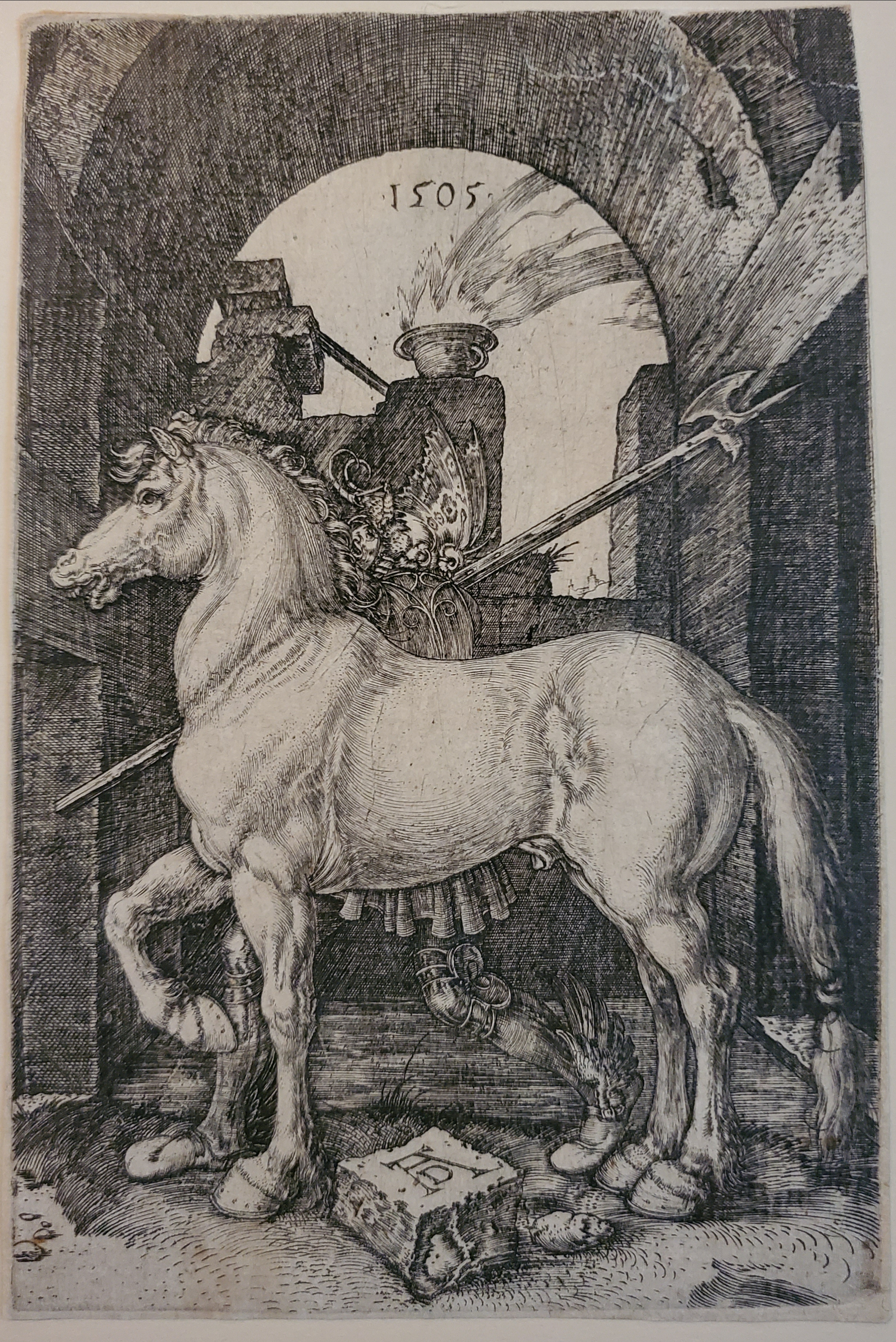 The Small Horse