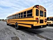 Savanna Bus 2.jpg