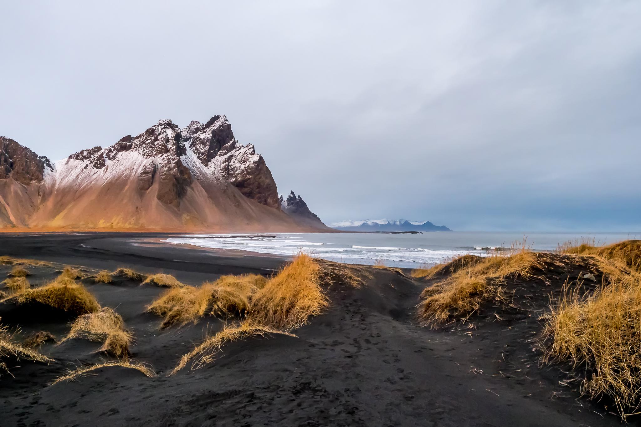 L'or des dunes - Mention 114e - Nature C