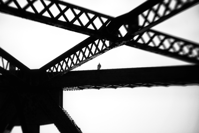 Sentinelle de fer