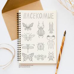 Раскраска_насекомые-prev_cr