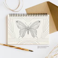 Раскраска-бабочкаИрина_prev_cr