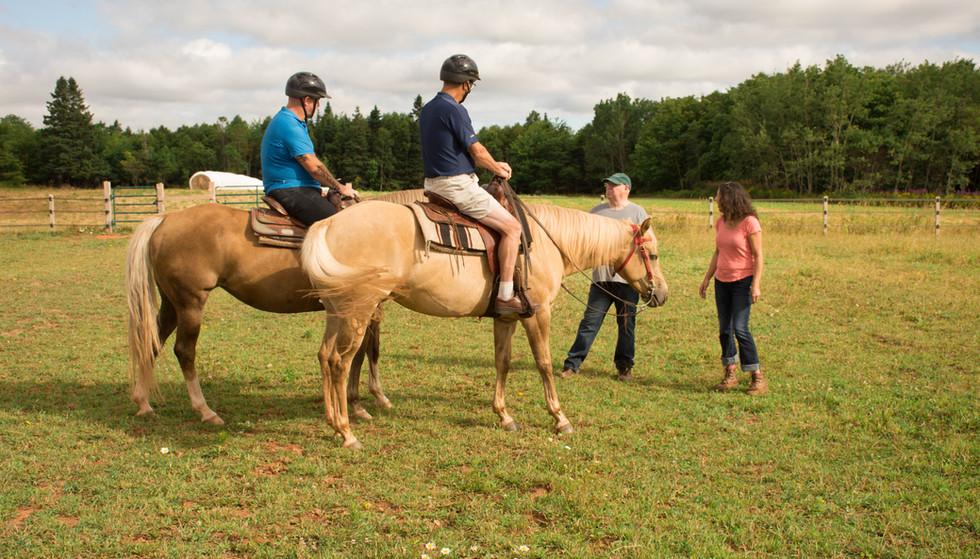 horse GG (29 of 36).jpg
