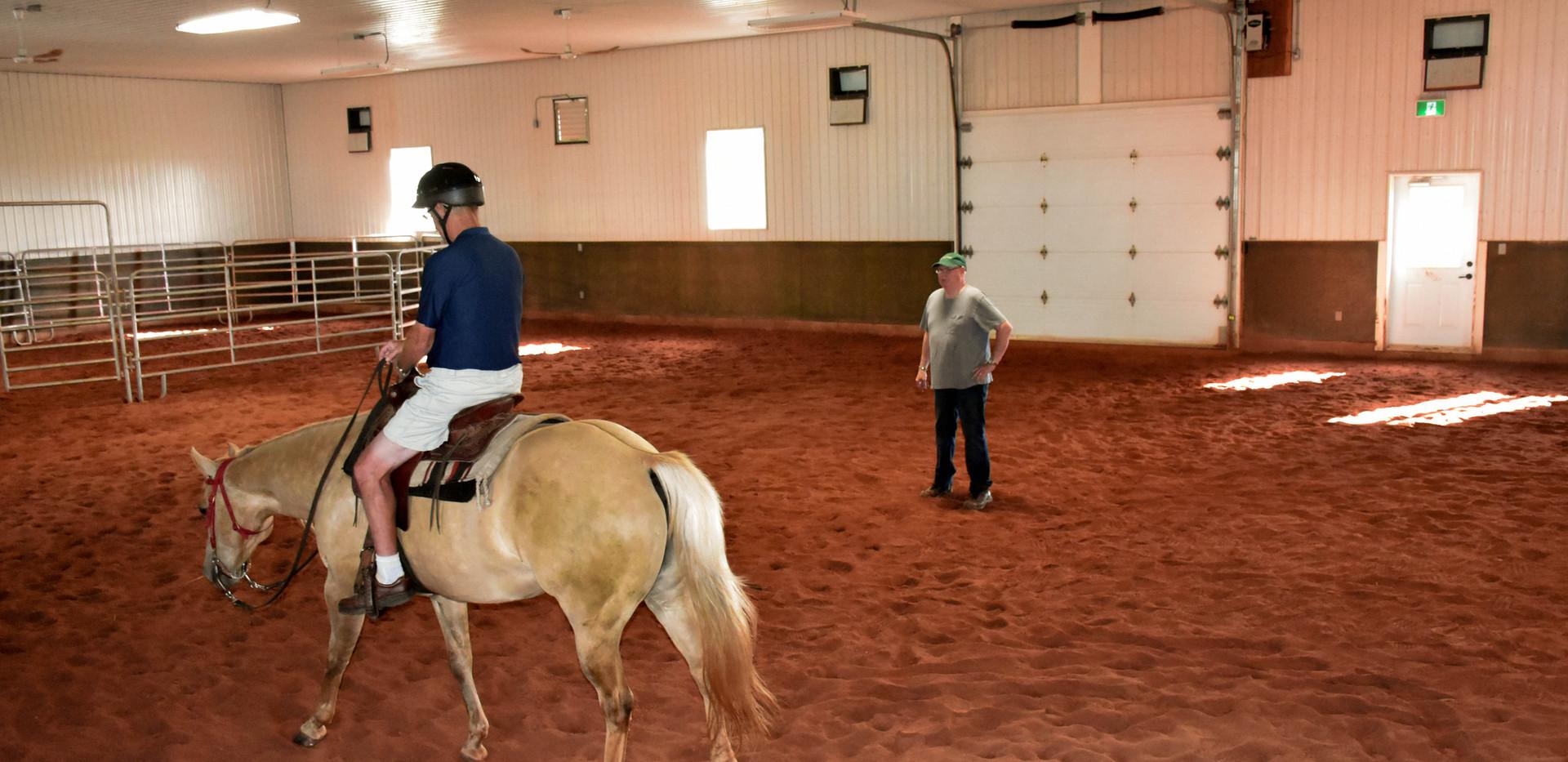 horse GG (9 of 36).jpg