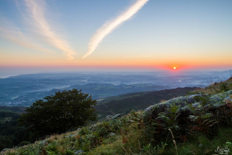 Sunrise La Rhune Arbre.jpg