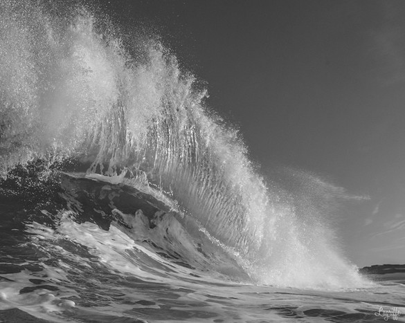 Shorewash