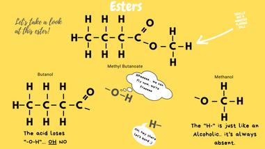 Identifying Esters
