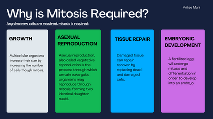 Why is Mitosis Required?
