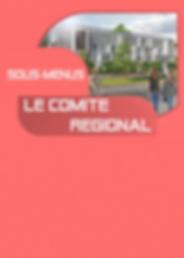 Le_comité_régional1.png