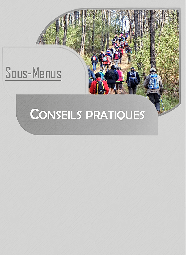 Ressources (7).png