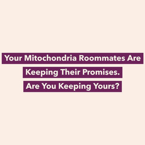 Your Mitochondria Roommates Are Keeping Their Promises Everyday In Your Body. Are You Keeping Yours?