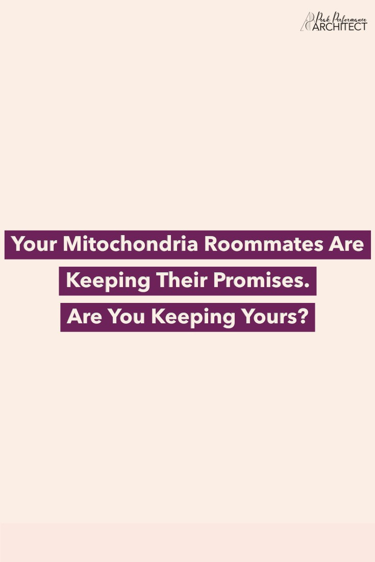 Your mitochondria roommates are keeping their promises. Are you keeping yours?