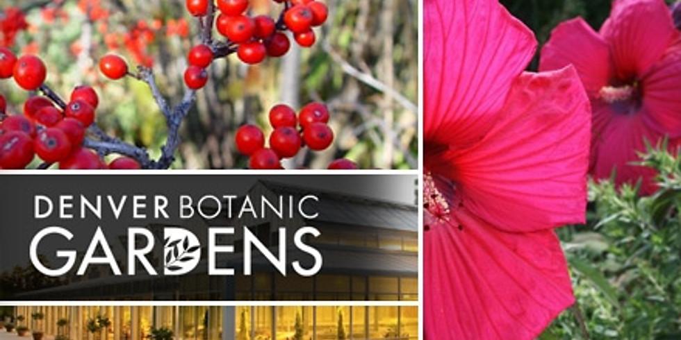 Homeschool Programs at Denver Botanic Gardens