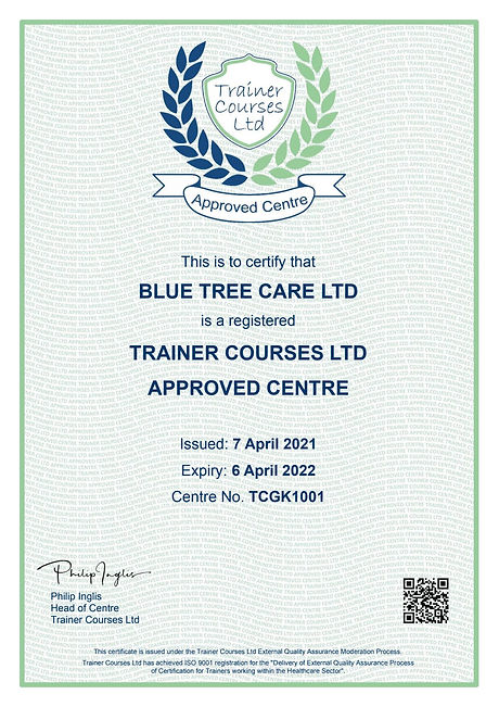 Trainer Courses Ltd Certificate