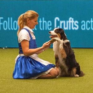 DOG DANCING- Bérczes Christine Elisabeth