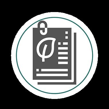 Icones_serviços_site(3).png