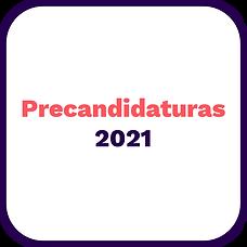 Precandidaturas2021.png