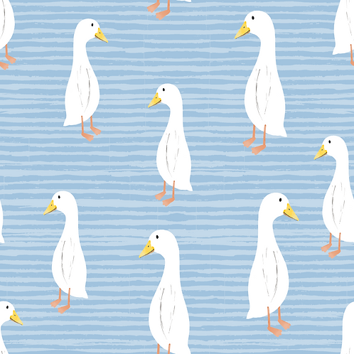Shorts - Ducks
