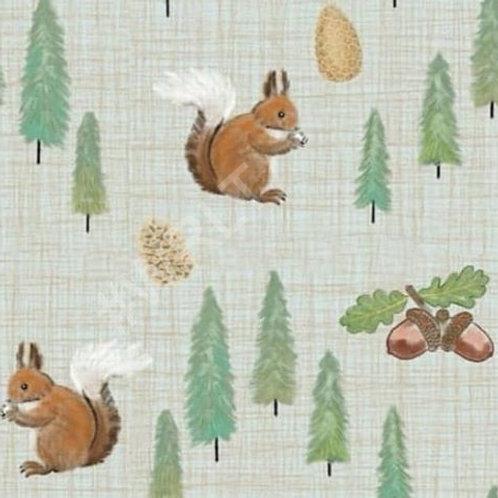 Nutkin Squirrels Bummie Romper