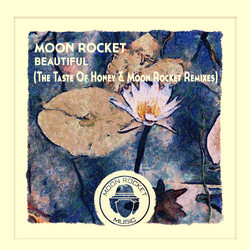 moon rocket beautiful