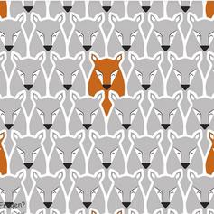 Hiding Wolves Orange