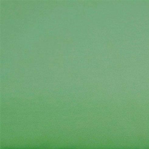Dirty Mint Cotton Jersey 220gsm - #103