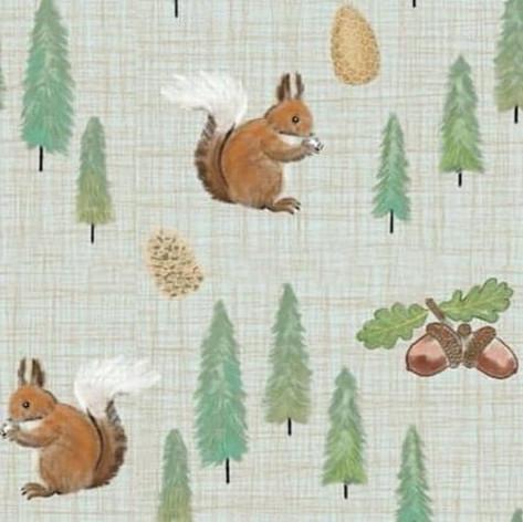 Nutkin Squirrel