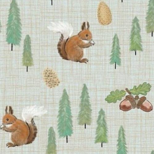 Nutkin Squirrels Sweatshirt