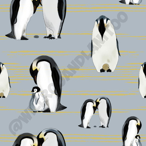 Penguins On Grey