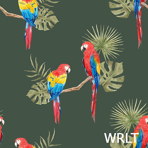 Full Skirt Dress With Sleeve Variations - Parrots