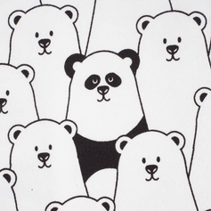Finding Panda