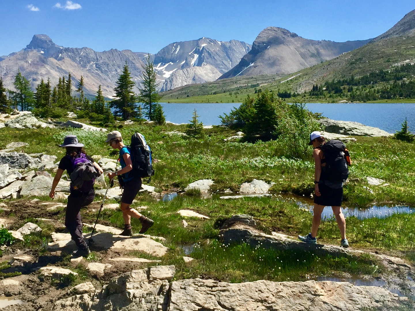 Group of Ladies Hiking in Banff