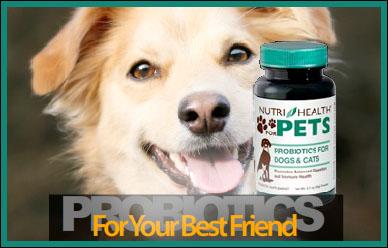 Nutri-Health Pets Banner