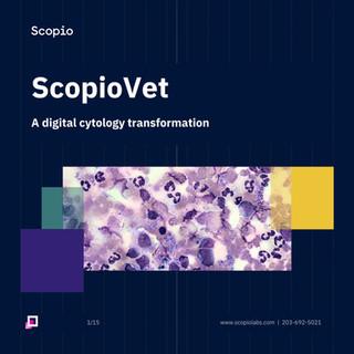 Scopio eBook