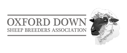 Oxford Down Sheep logo