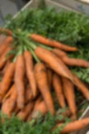 carotte Légume bio blois